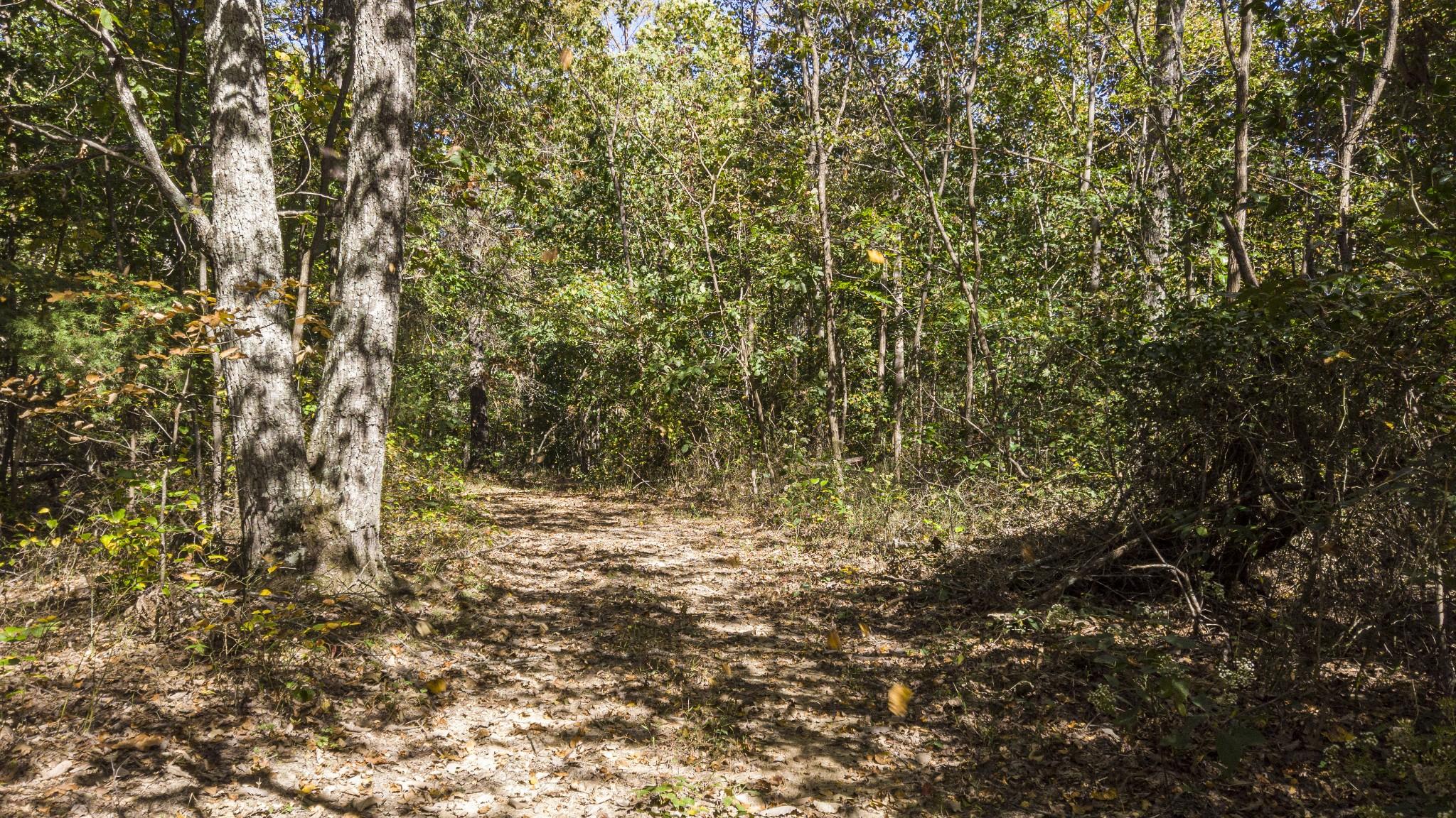 0 Bull Run Rd Property Photo - Ashland City, TN real estate listing
