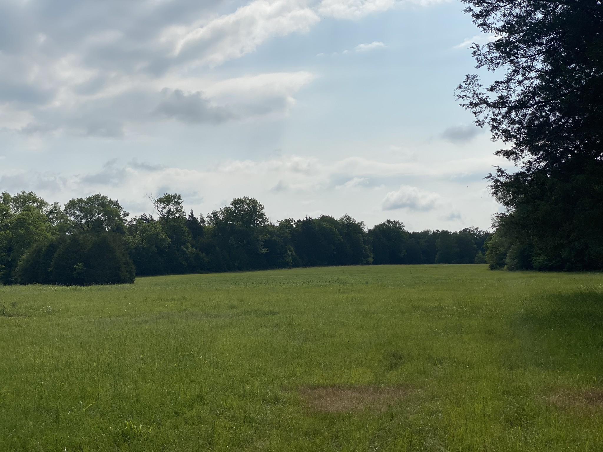 20 Hill Road Property Photo - Eagleville, TN real estate listing