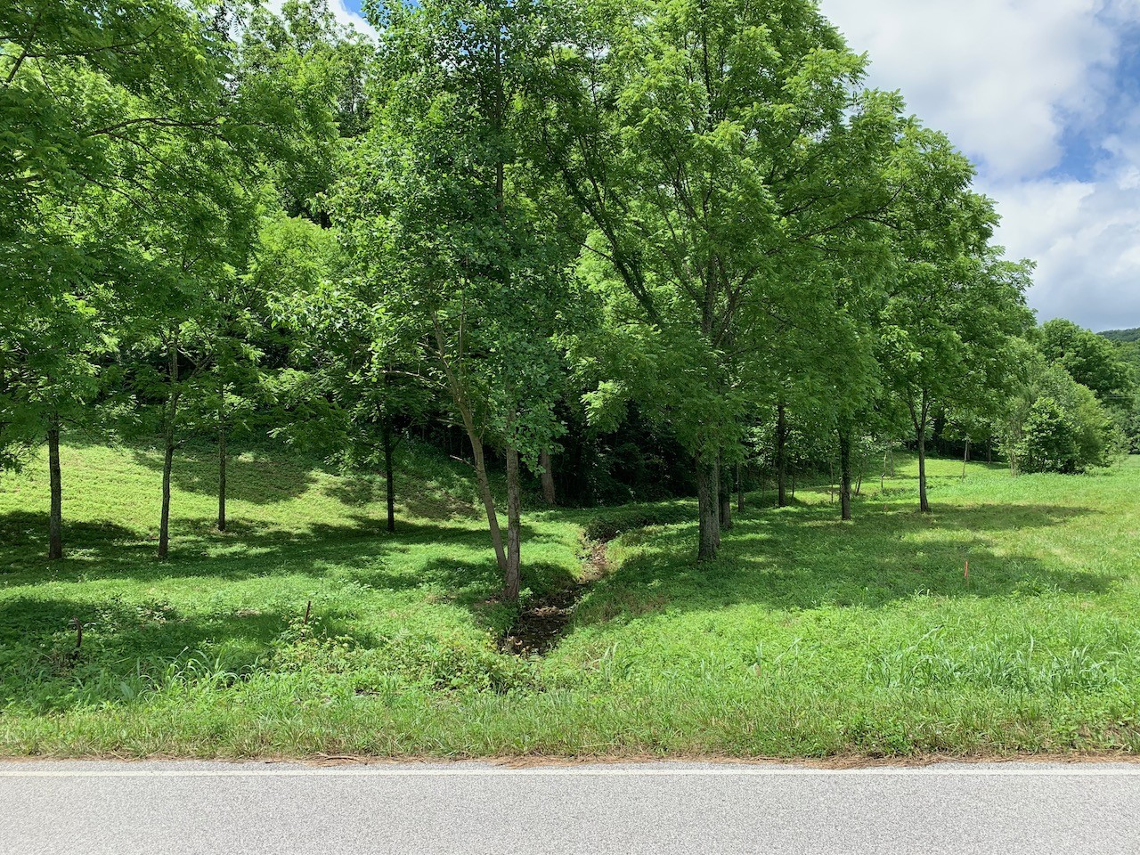 147 Big Creek Rd Property Photo - Pleasant Shade, TN real estate listing