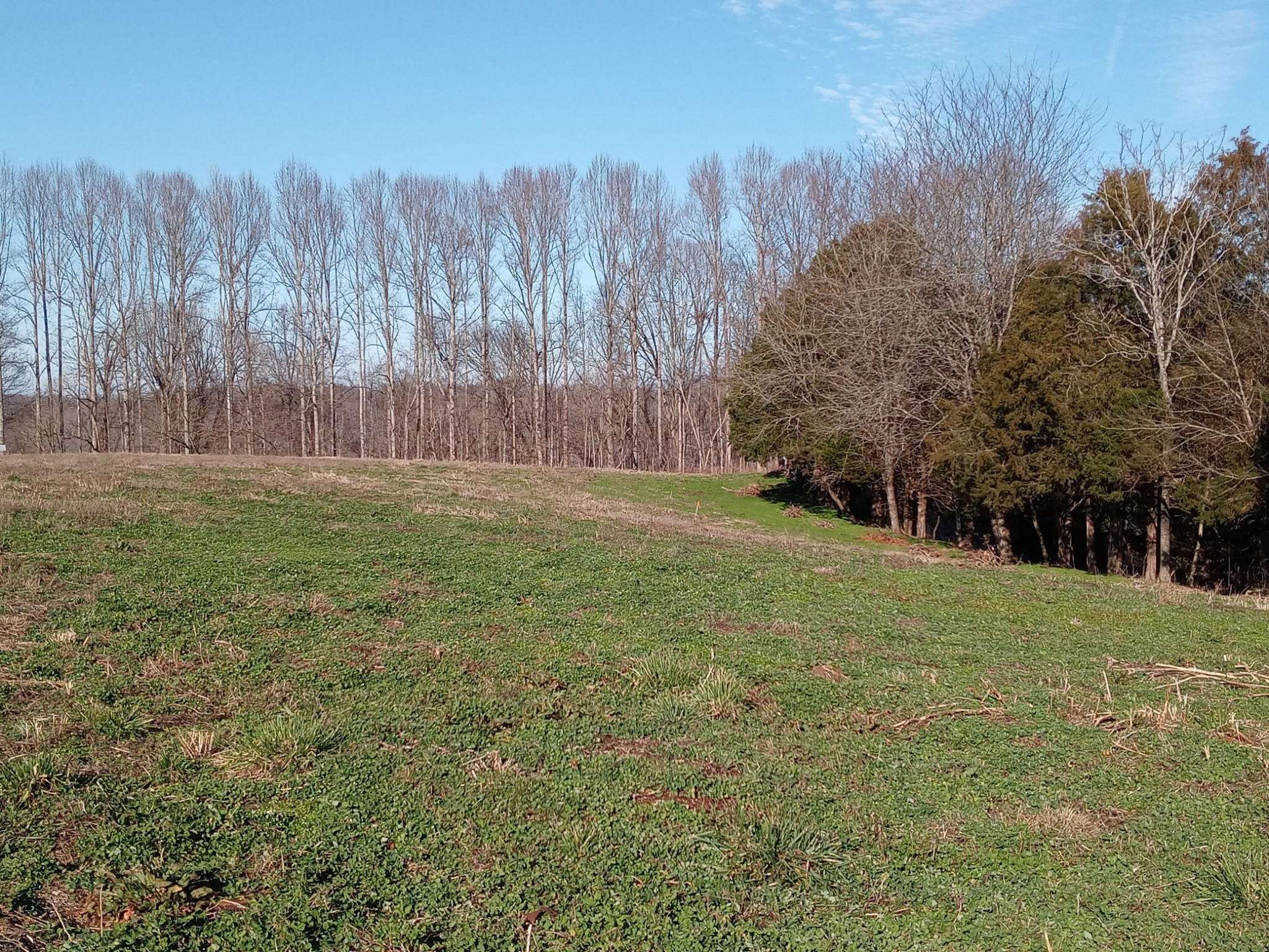 0 Lanis rd Property Photo - Baxter, TN real estate listing