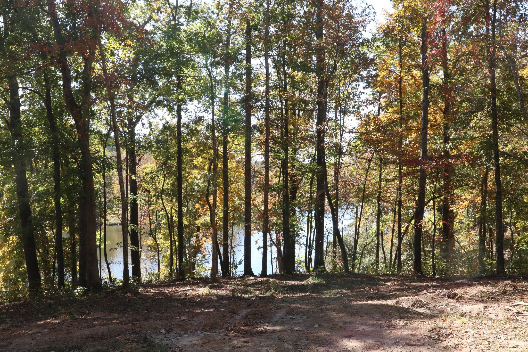 48 Amazing Place Property Photo - Summertown, TN real estate listing