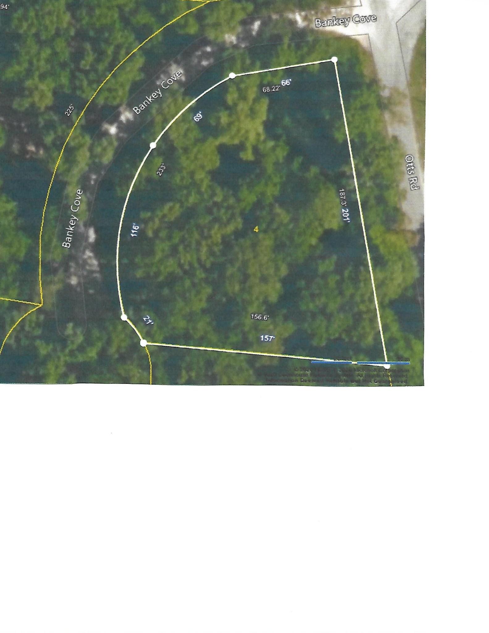 4 Bankey Cove Property Photo - Buchanan, TN real estate listing