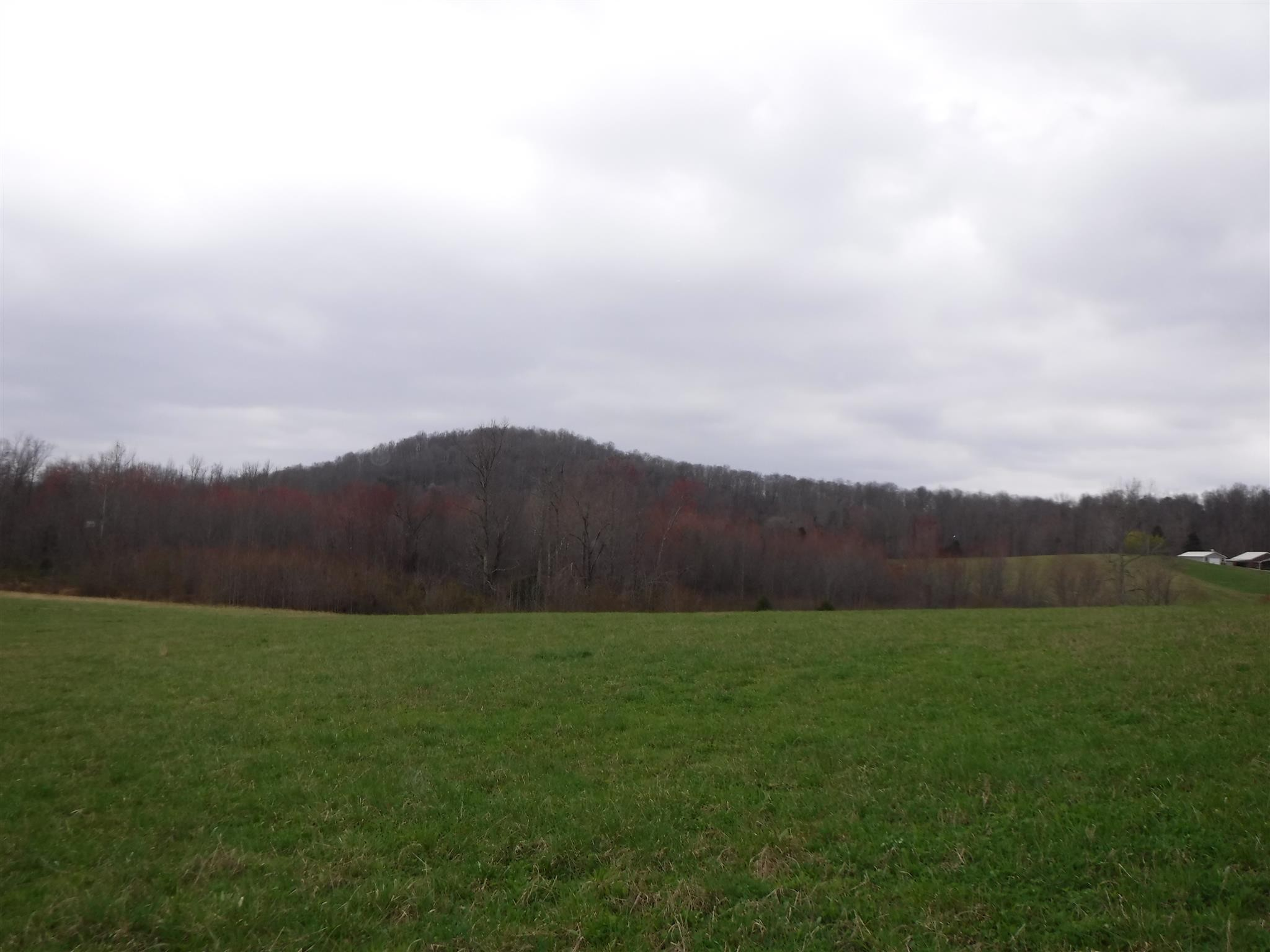 25 Summer Shade Rd Property Photo - Allons, TN real estate listing