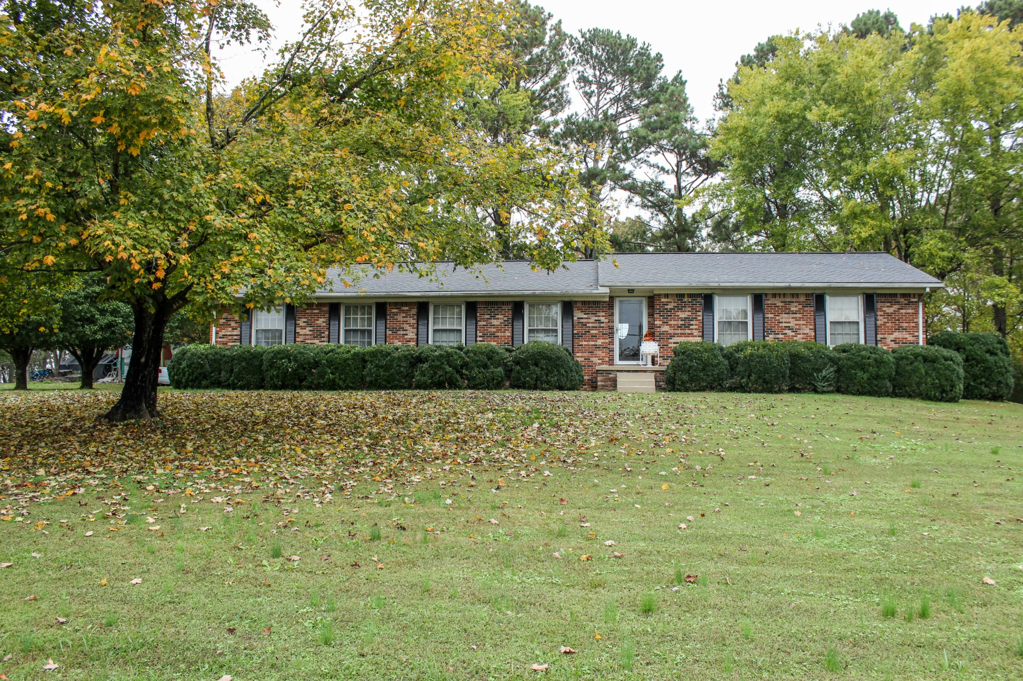 3613 Highway 43 S Property Photo - Loretto, TN real estate listing