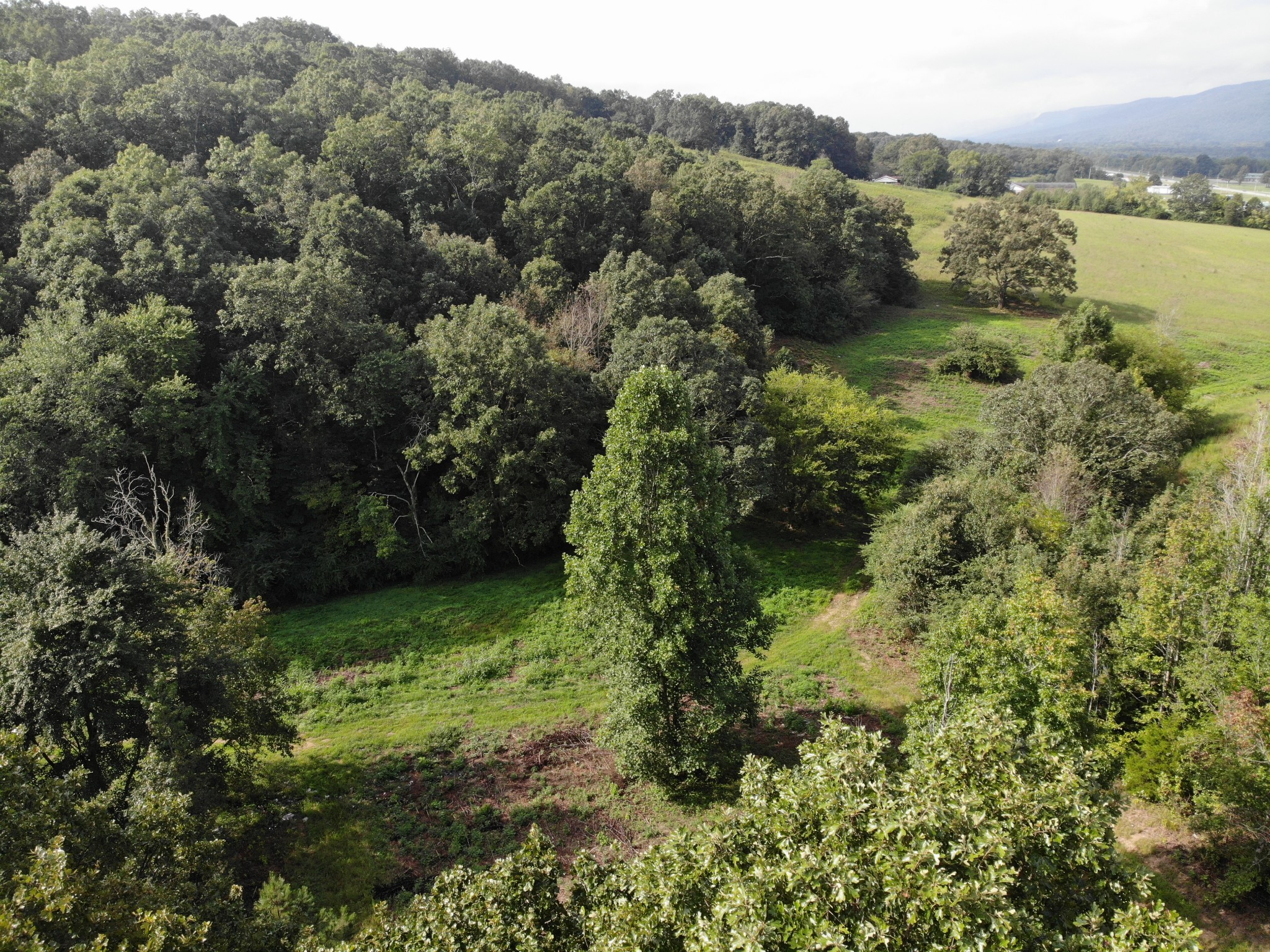 0 Cordell Dr Property Photo - Dunlap, TN real estate listing