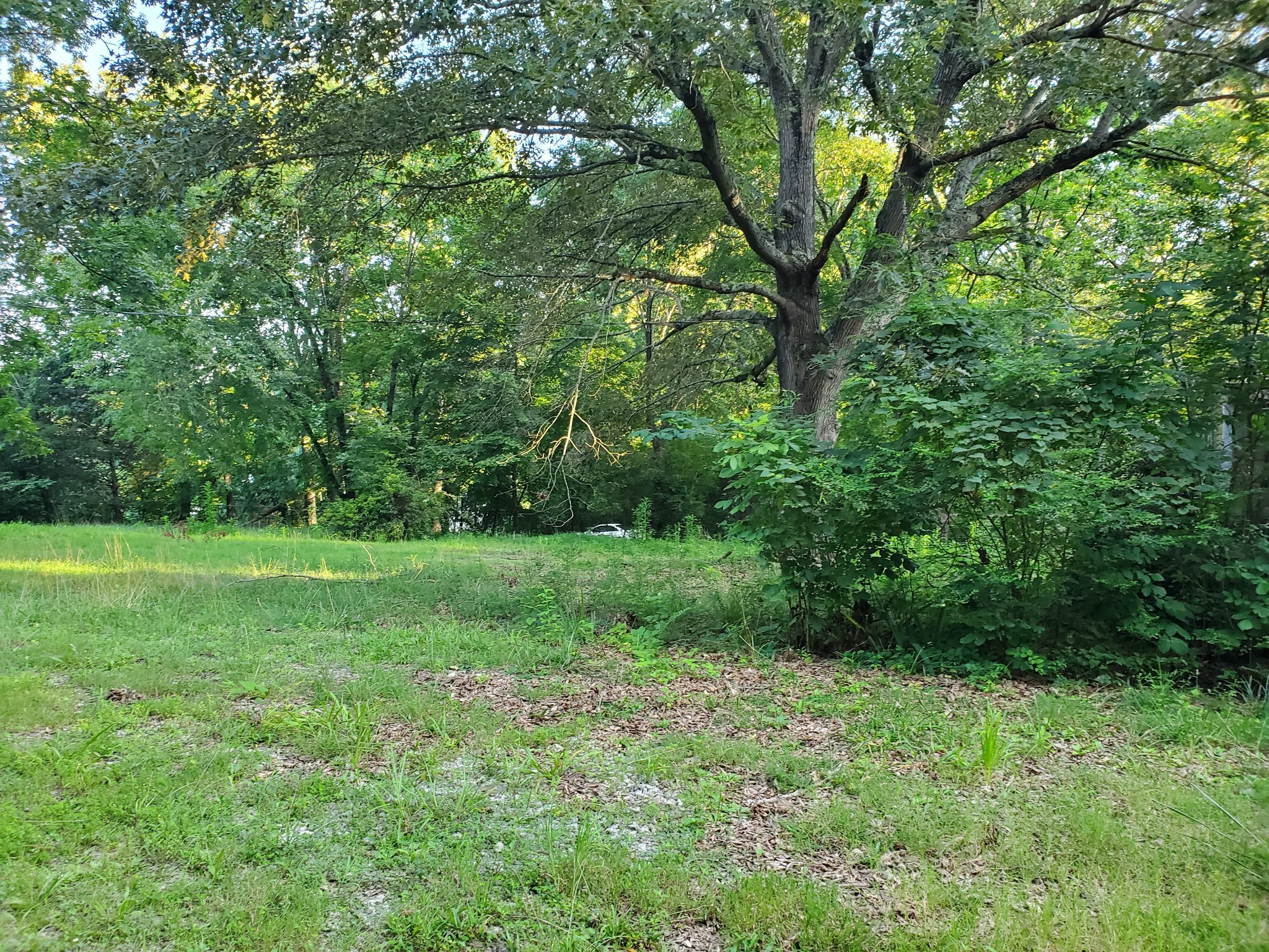 1812 Evans Rd Property Photo - Clarksville, TN real estate listing