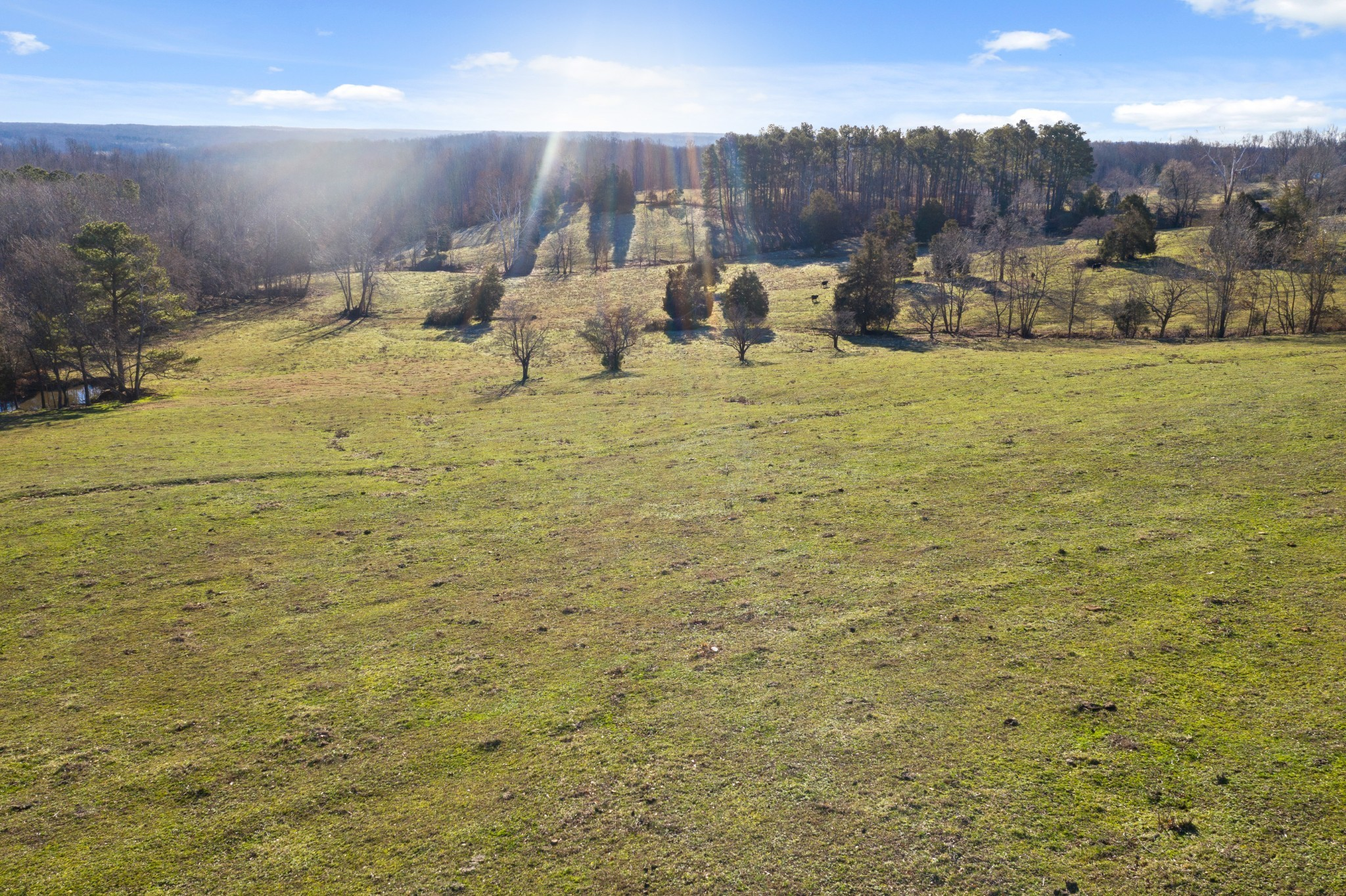 7 Barber Hwy Property Photo - Cumberland City, TN real estate listing