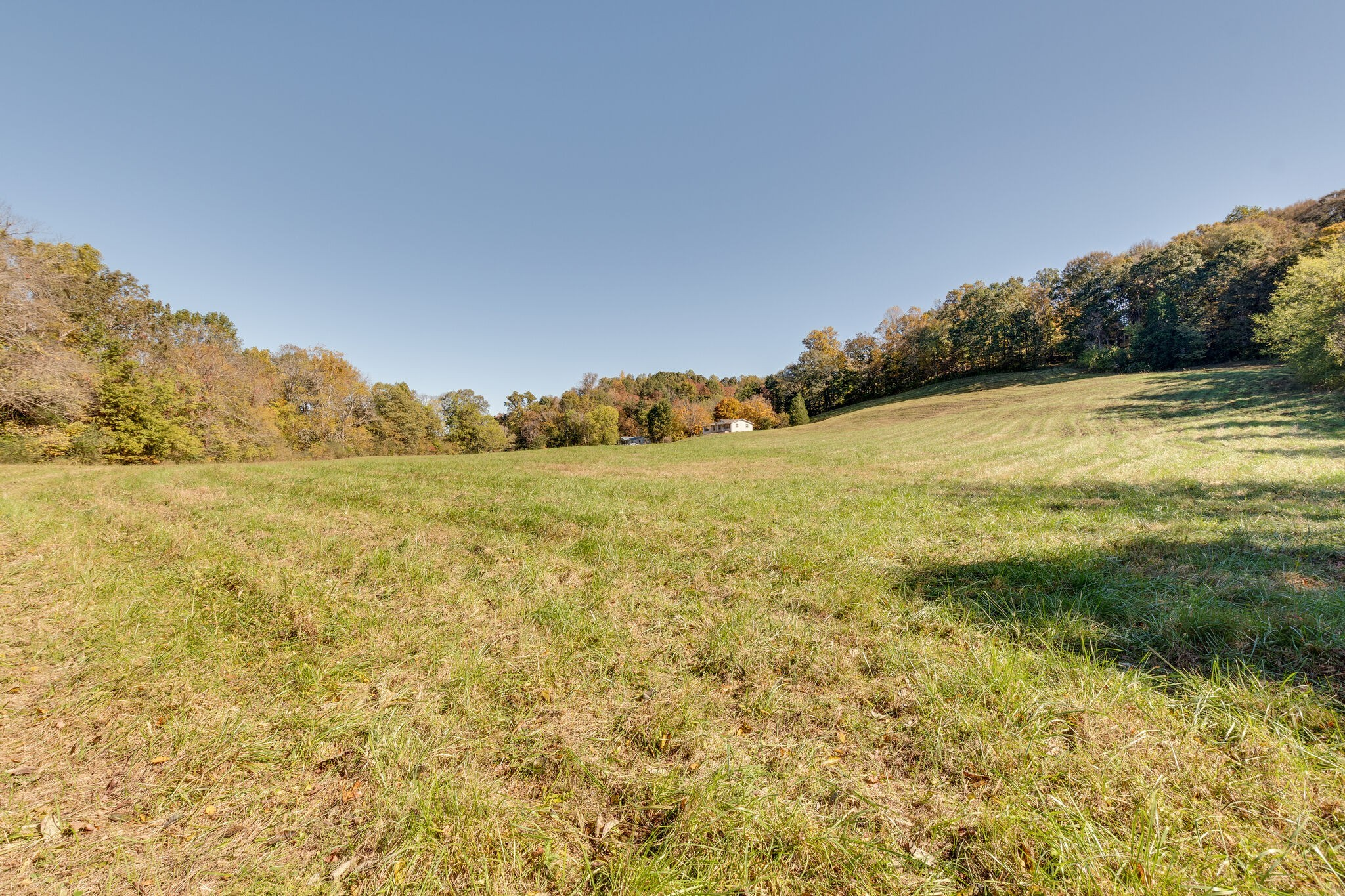 8740 Dick Davis Rd Property Photo - Williamsport, TN real estate listing