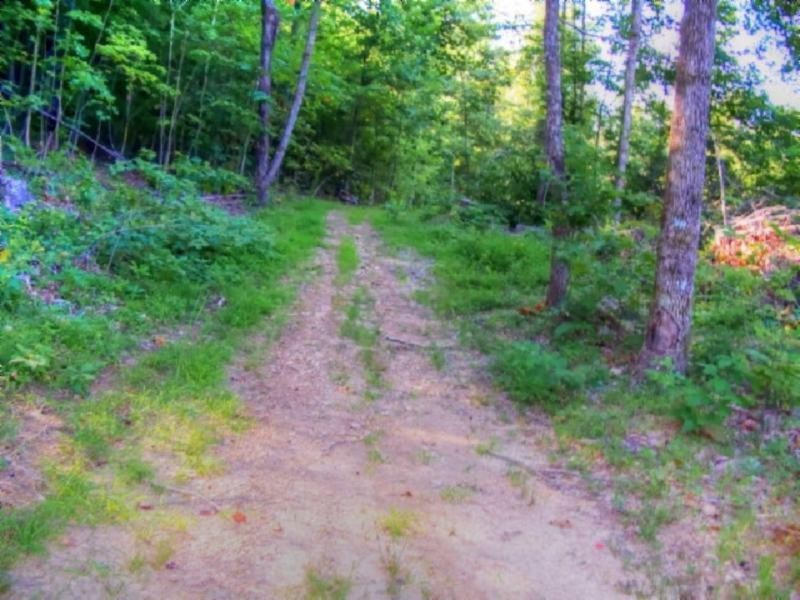 19 .45ac Bear Hollow Ln Property Photo - Livingston, TN real estate listing
