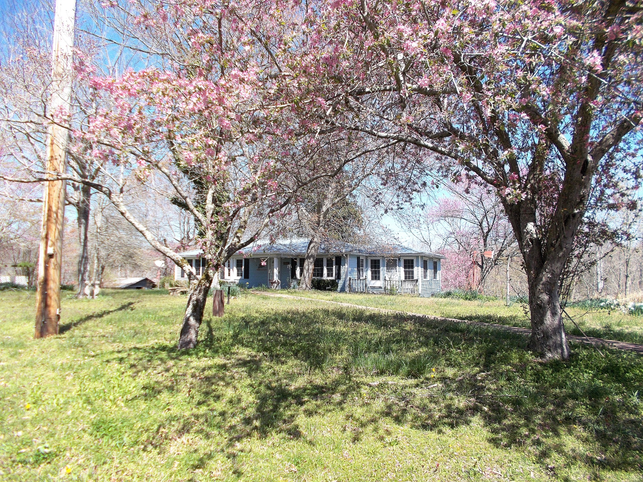 6951 Highway 230 Property Photo - Lyles, TN real estate listing