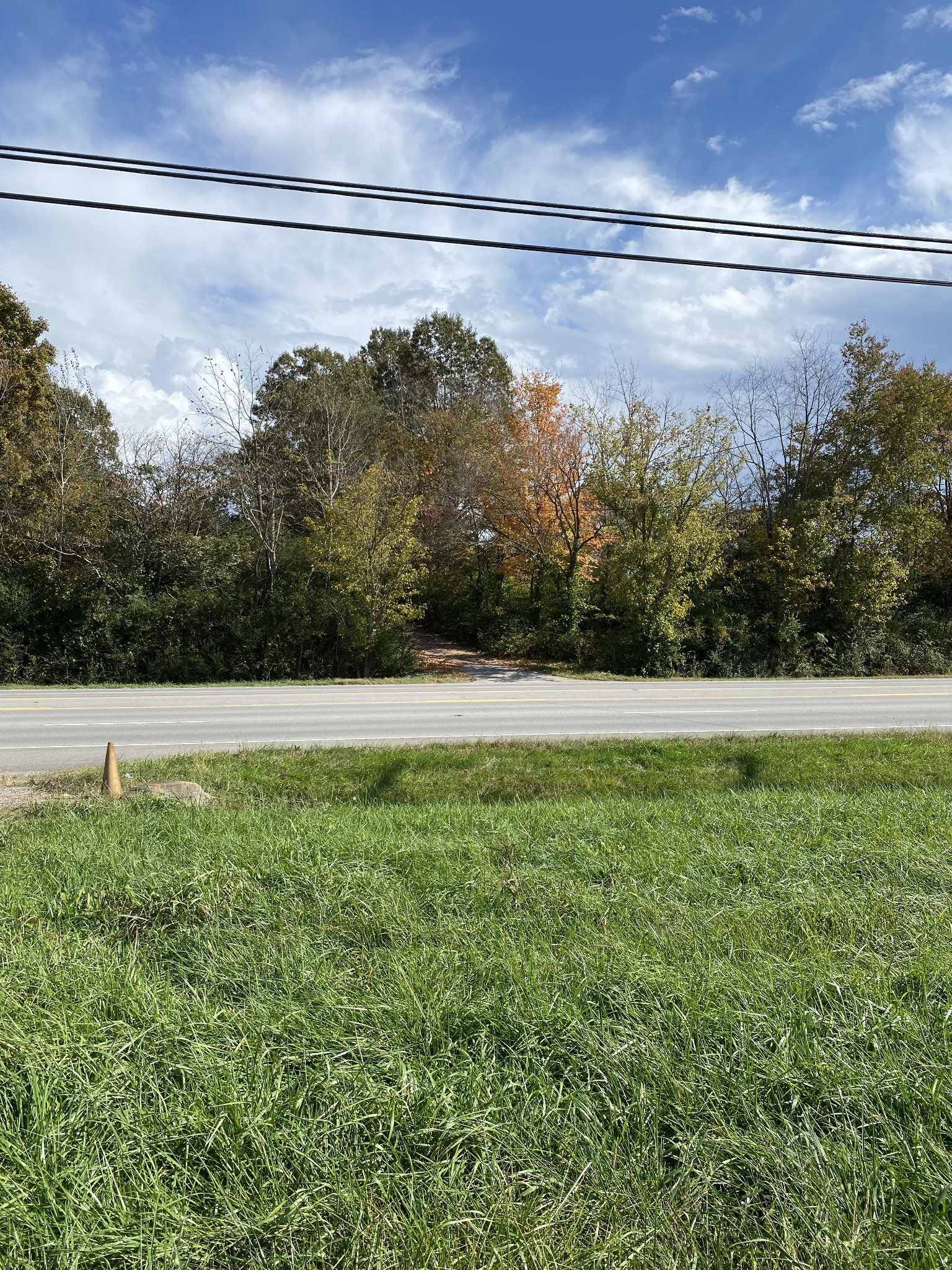 0 Highway 43 South Property Photo - Leoma, TN real estate listing