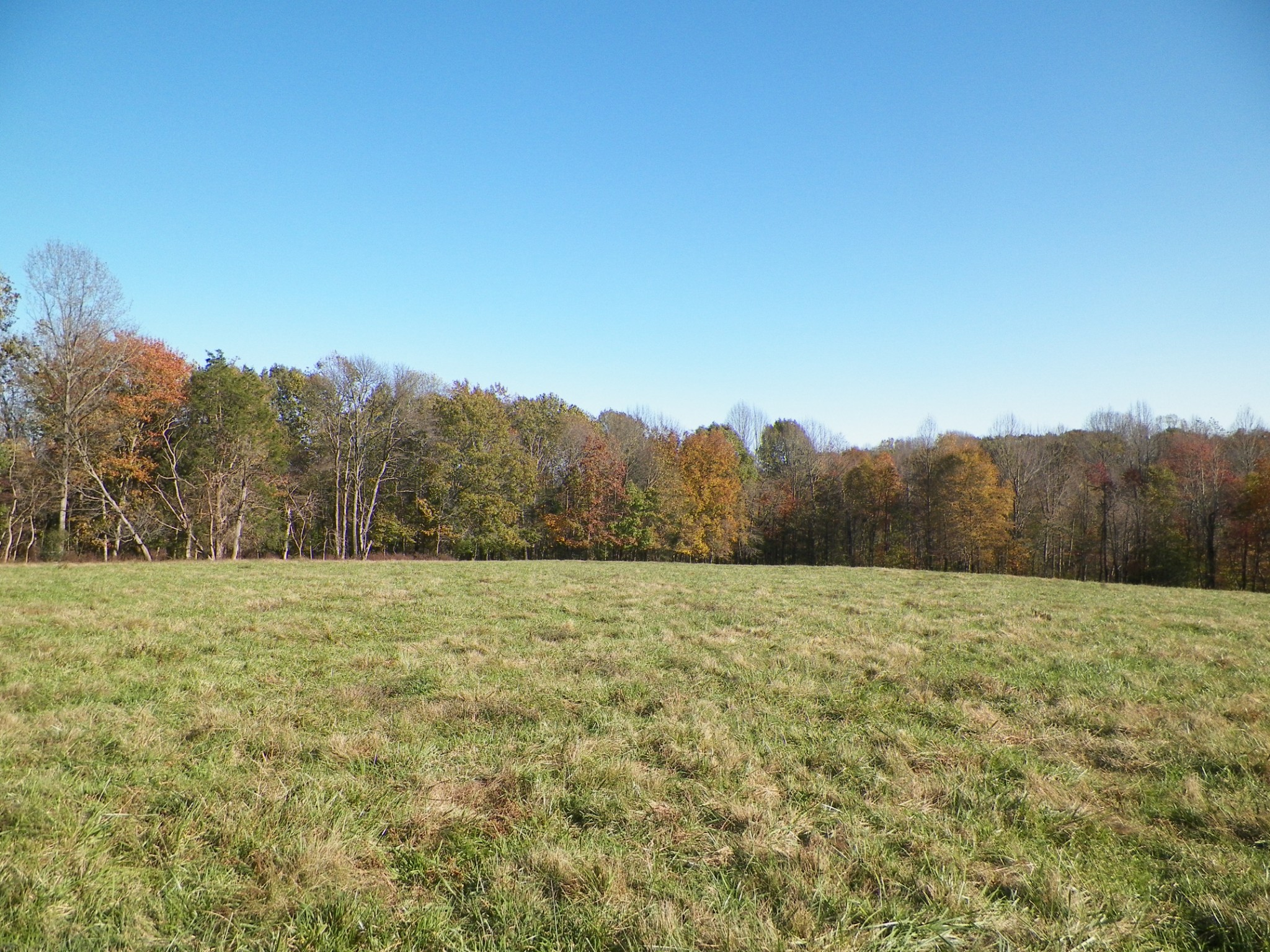 480 Chaffin Rd Property Photo - Lafayette, TN real estate listing