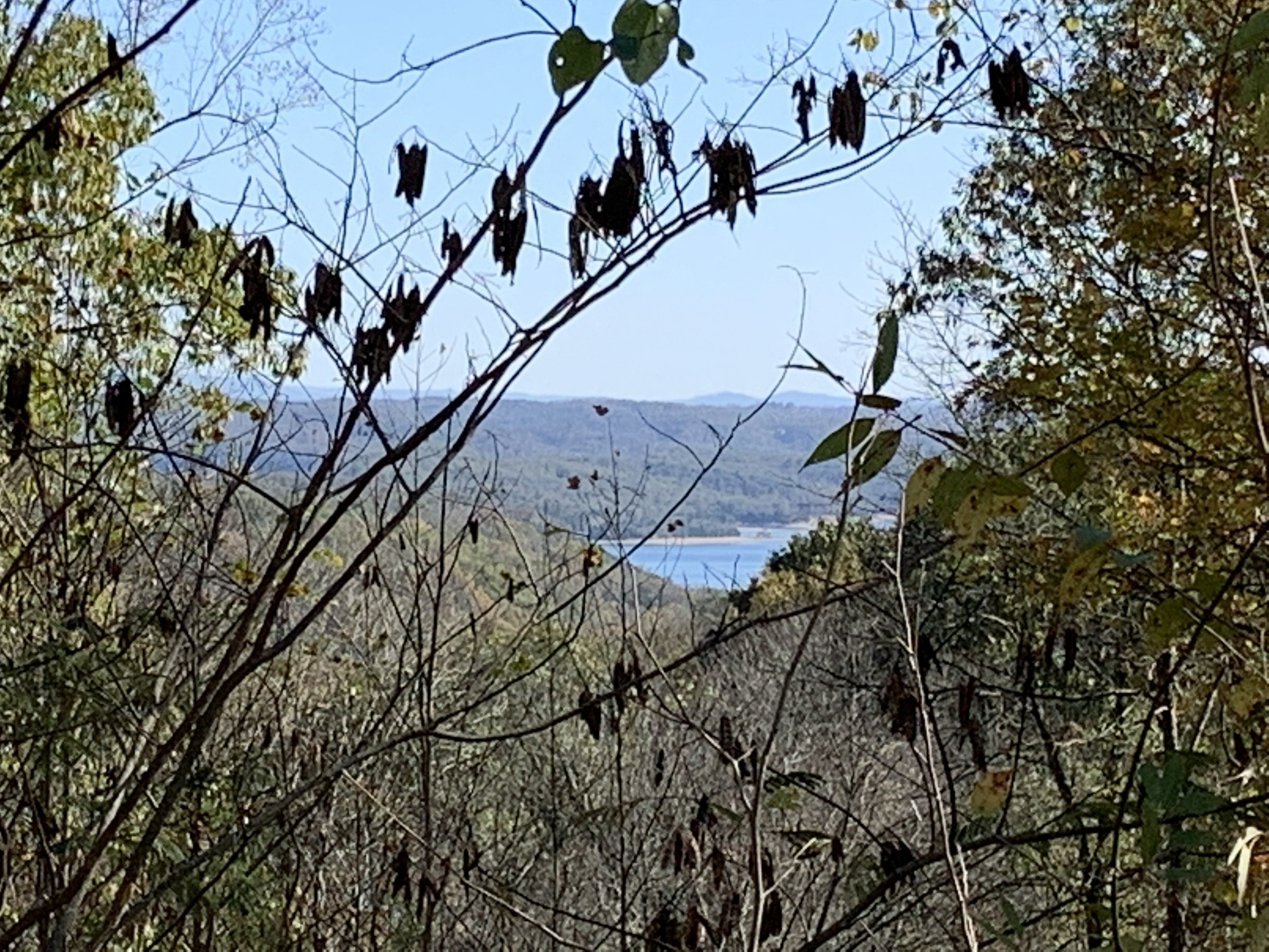 0 Rock Springs Rd Property Photo - Celina, TN real estate listing
