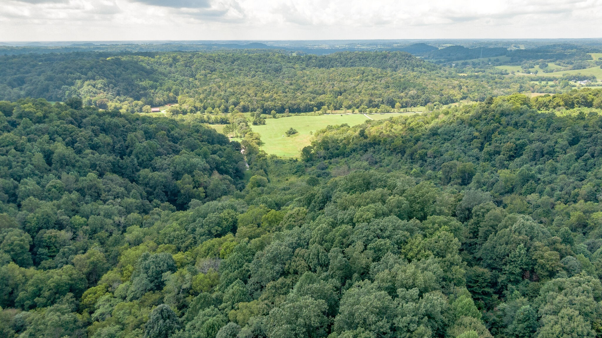 0 James Hollow Rd Property Photo - Lynnville, TN real estate listing