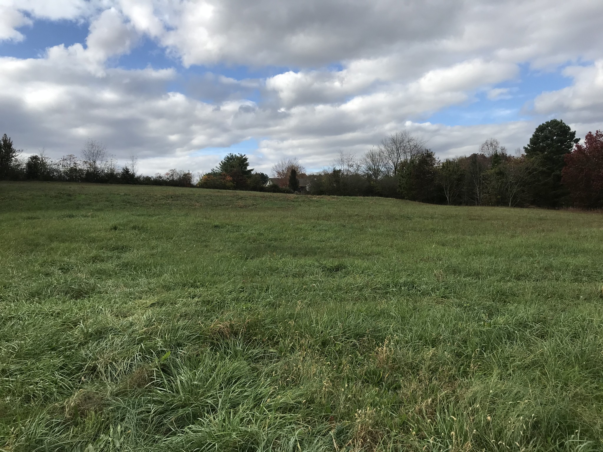 0 43 highway S Property Photo - Leoma, TN real estate listing