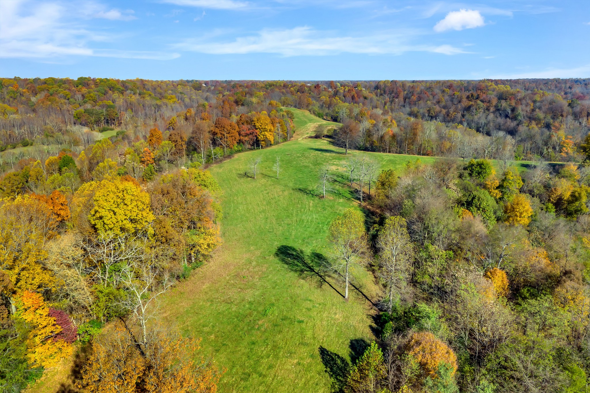 0 Buttermilk Hollow Rd. Property Photo - Bethpage, TN real estate listing
