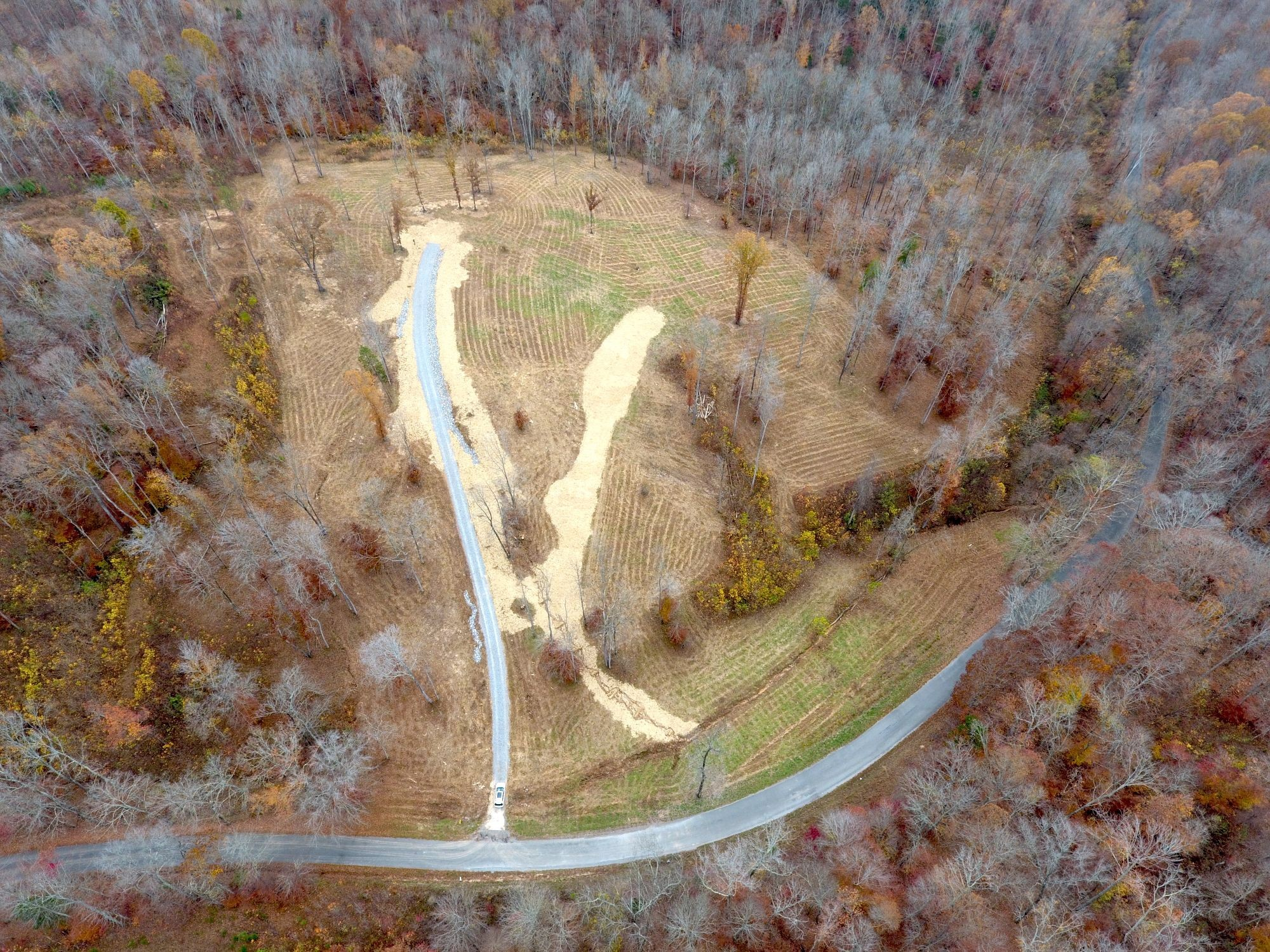 0 Bellwood Hollow Rd Property Photo - Indian Mound, TN real estate listing
