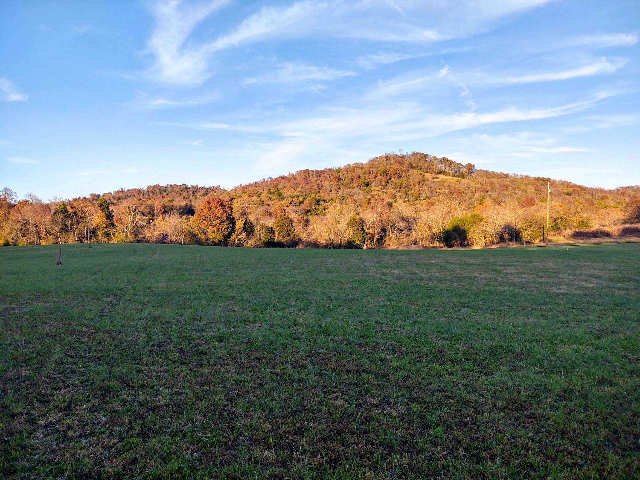 12 Sullivans Bend Road SE Property Photo - Elmwood, TN real estate listing