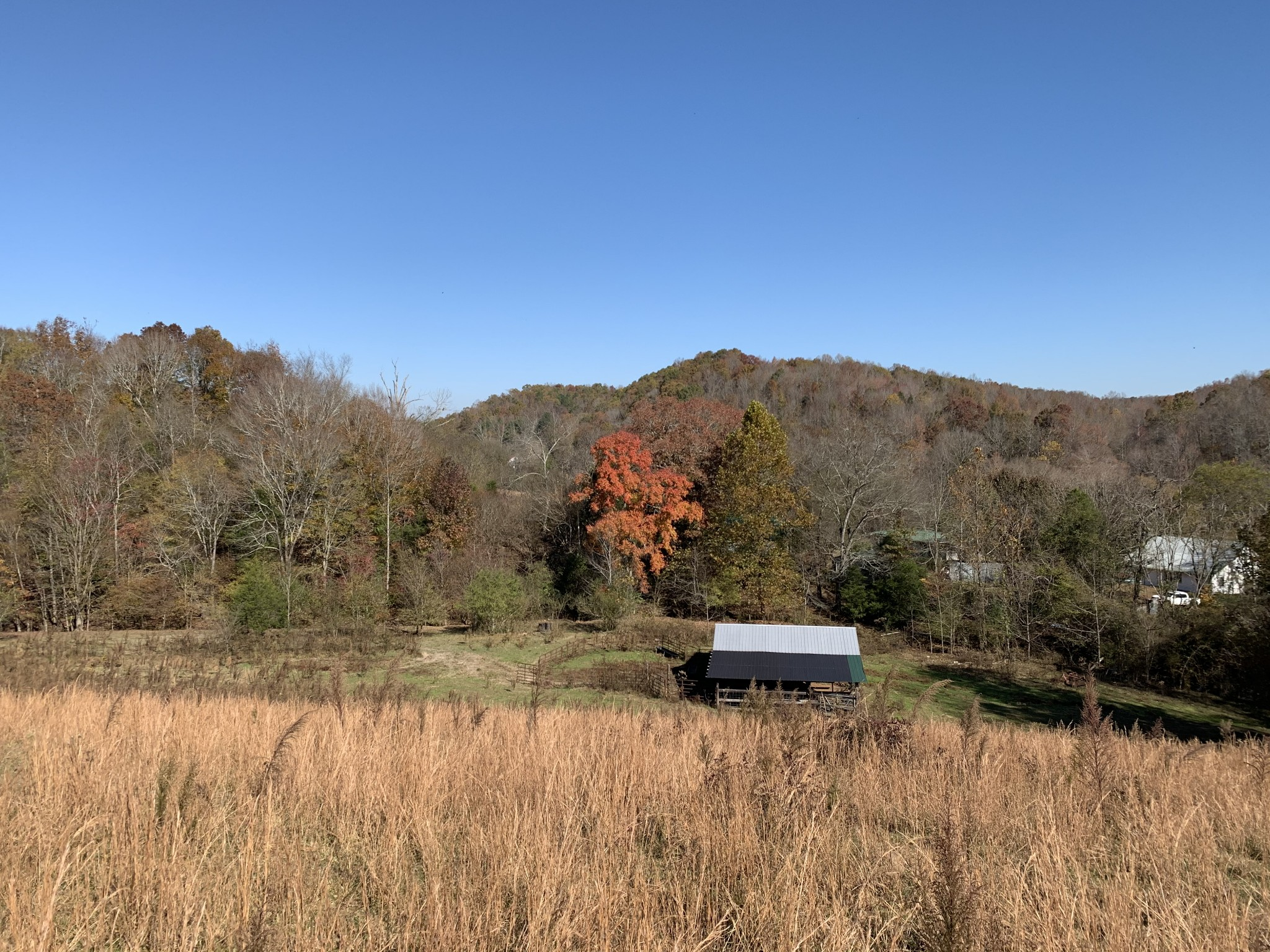 3524 Wayland Springs Rd Property Photo - Iron City, TN real estate listing