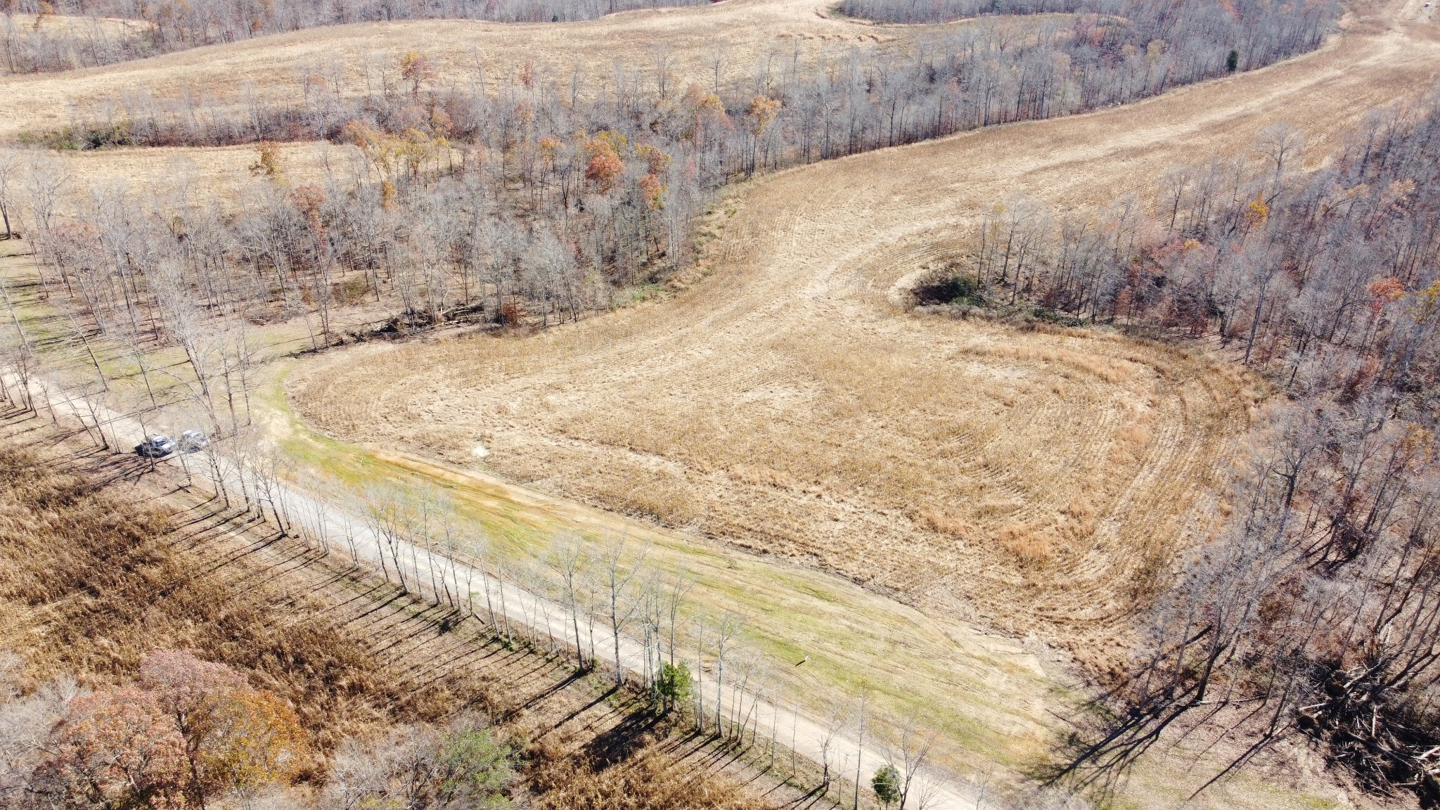 5 Moore Hollow Rd Property Photo - Indian Mound, TN real estate listing