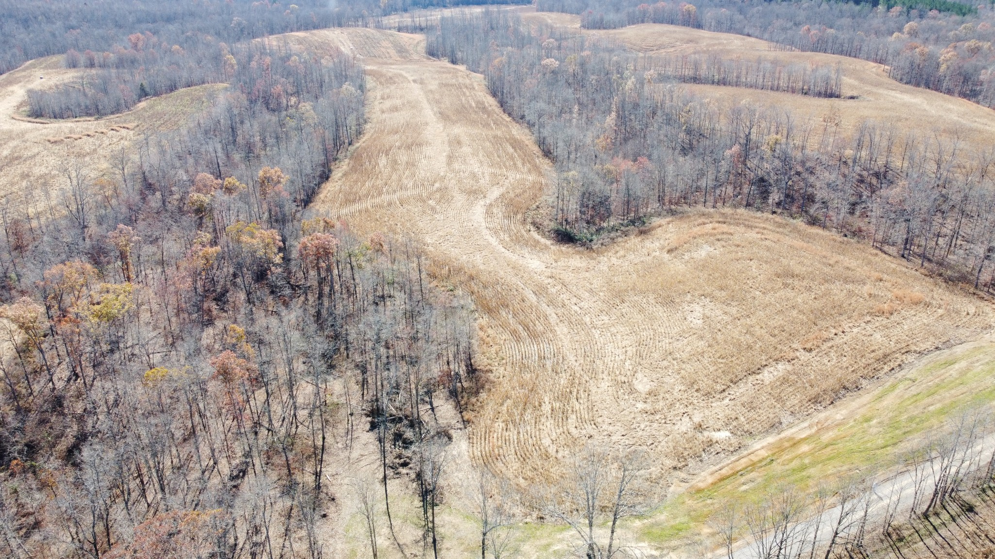 58 Moore Hollow Rd Property Photo - Indian Mound, TN real estate listing
