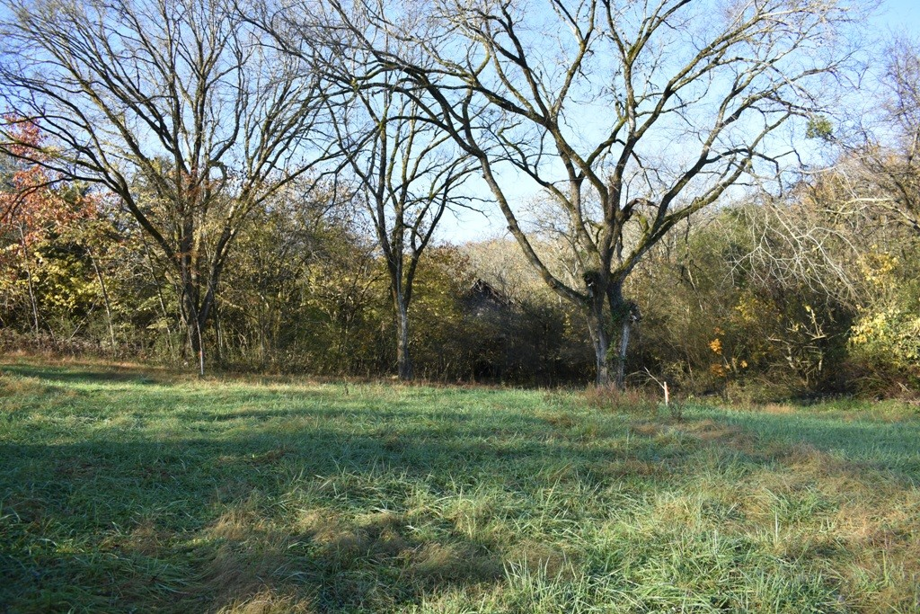 0 Enigma Rd Property Photo - Elmwood, TN real estate listing