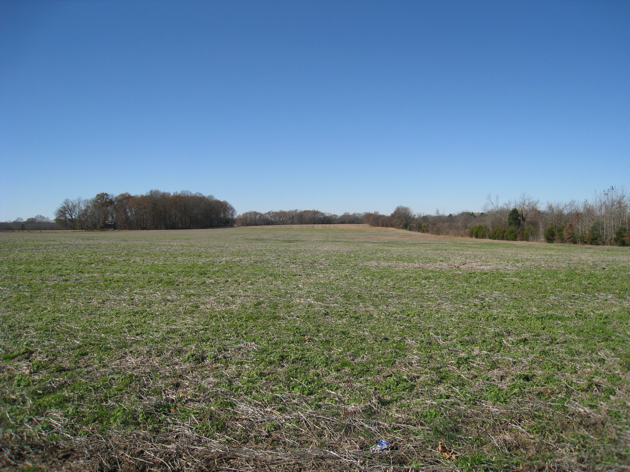 3 Maxwell Br Rd Property Photo - Cottontown, TN real estate listing