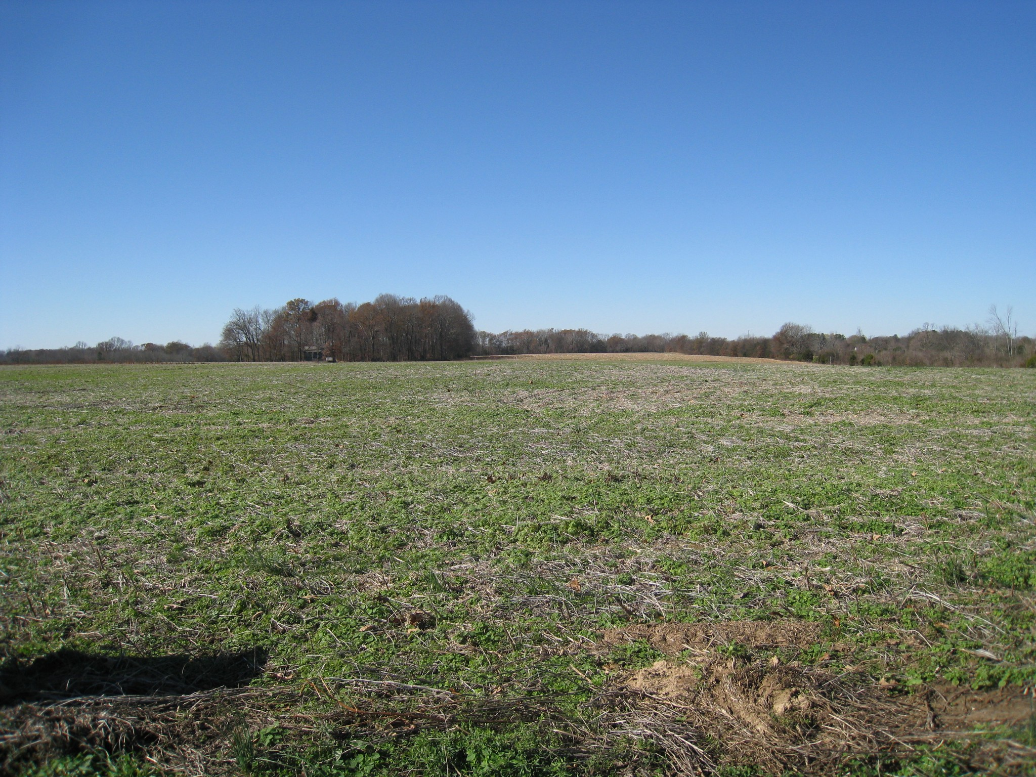 2 Maxwell Br Rd Property Photo - Cottontown, TN real estate listing