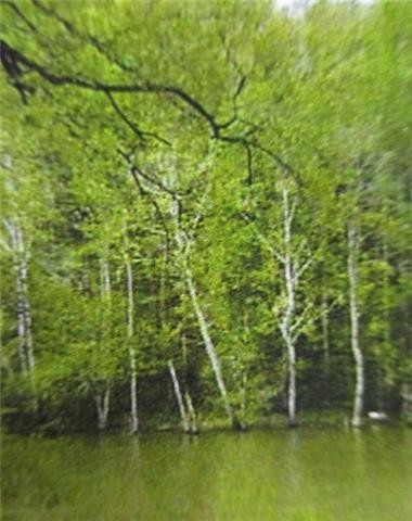 0 Caney Fork Rd Property Photo - Walling, TN real estate listing