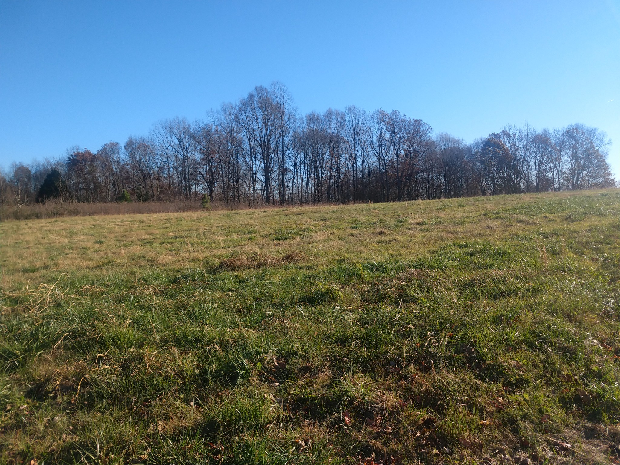 0 Oak Grove Rd Property Photo - Red Boiling Springs, TN real estate listing