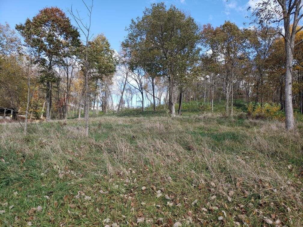 0 Brent Cove Rd Property Photo - Cornersville, TN real estate listing