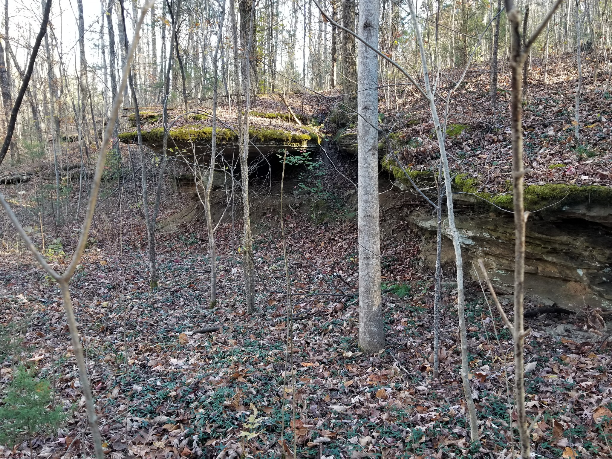 17 Yellow Flats Rd Property Photo - Spencer, TN real estate listing