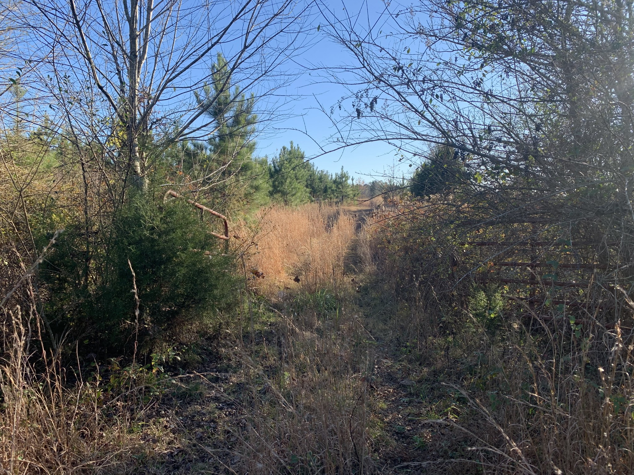 0 Meeks Rd Property Photo - Adamsville, TN real estate listing