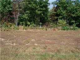 0 Box House Rd Property Photo - Belvidere, TN real estate listing