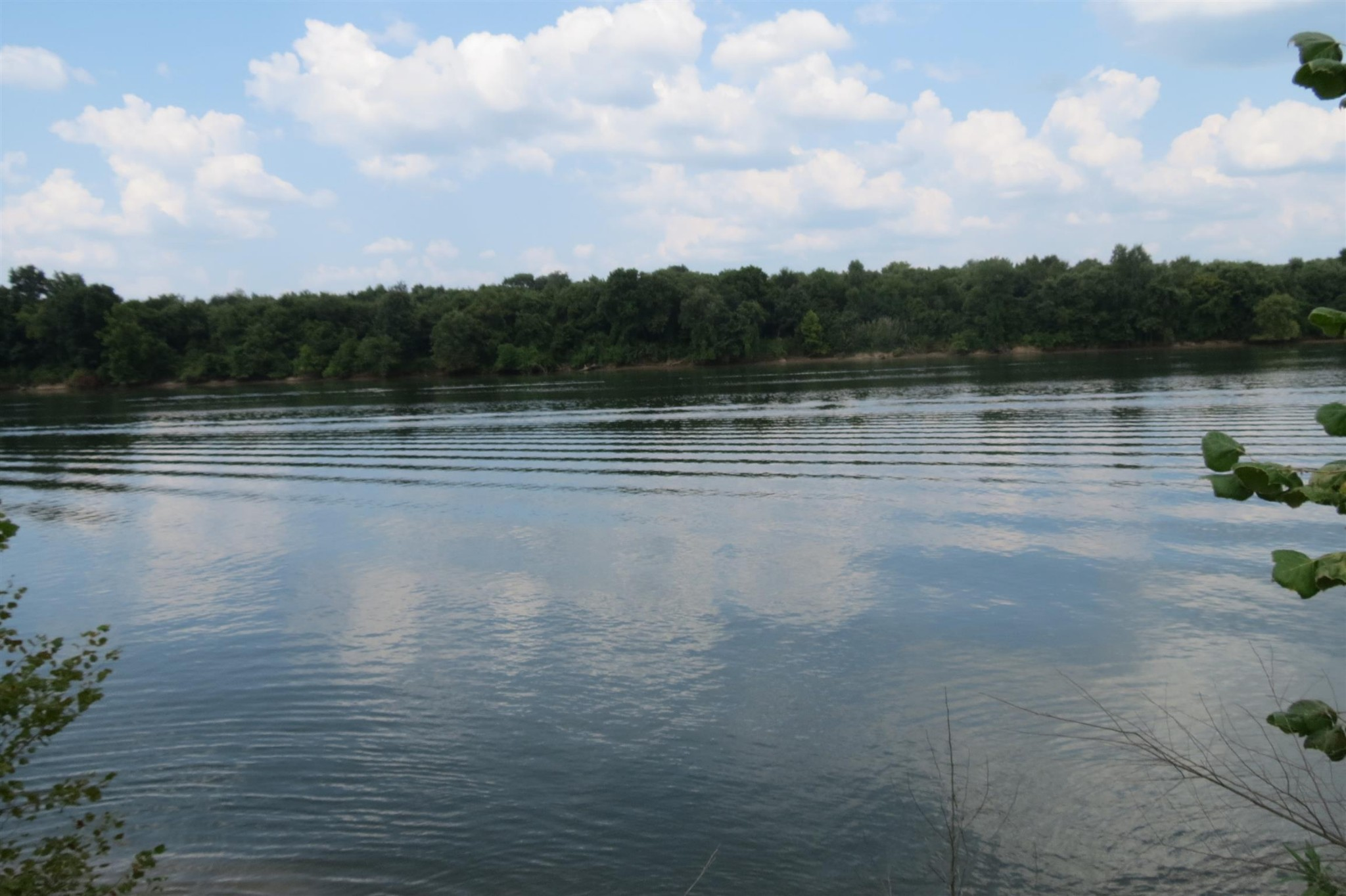 0 Scenic Ln Property Photo - Bath Springs, TN real estate listing