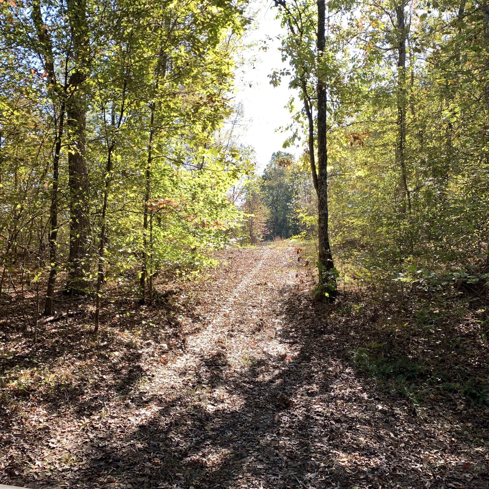 0 Deer Haven Rd Property Photo - Indian Mound, TN real estate listing