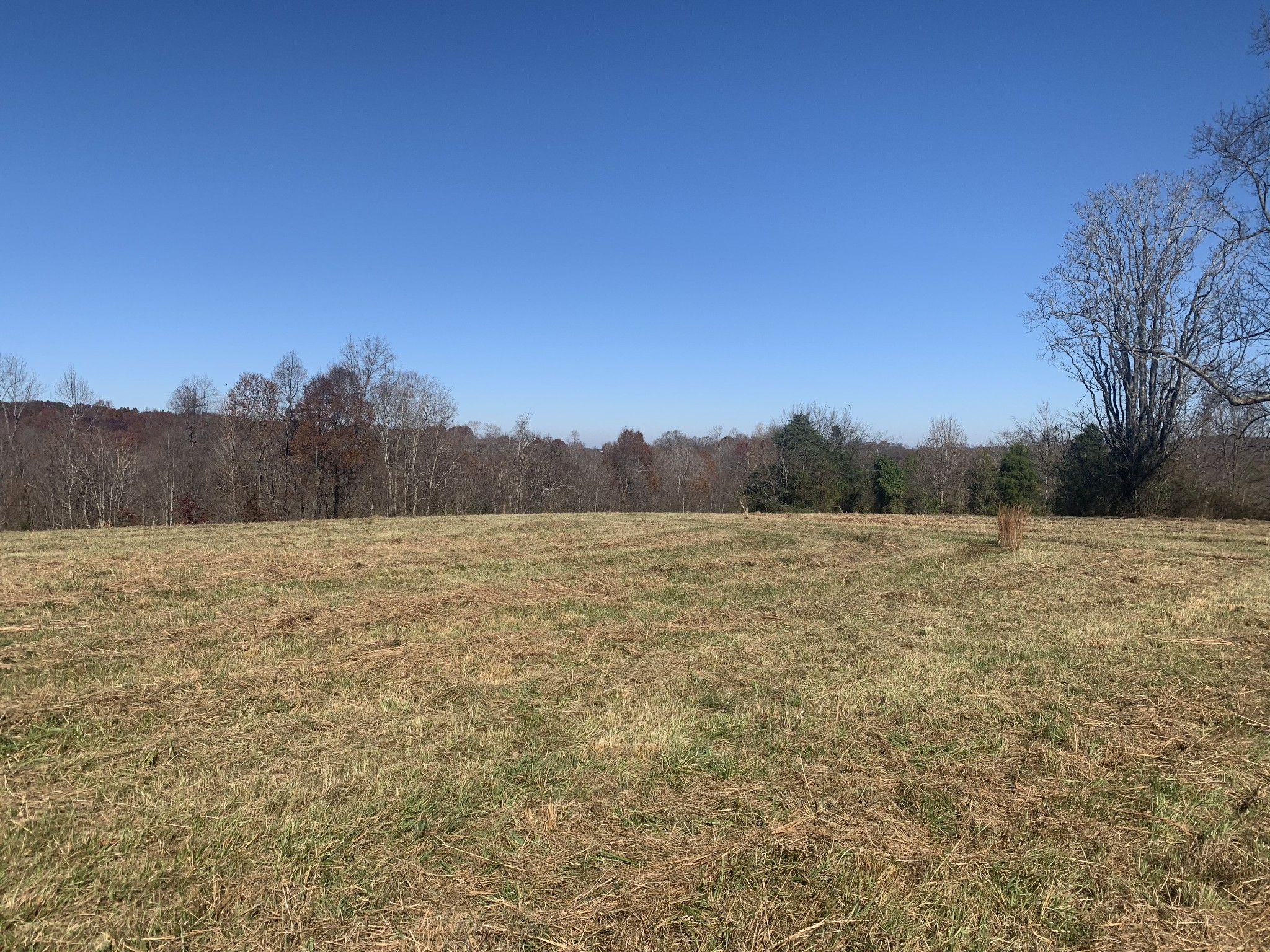 0 LEO WHITLEY ROAD Property Photo - Lafayette, TN real estate listing