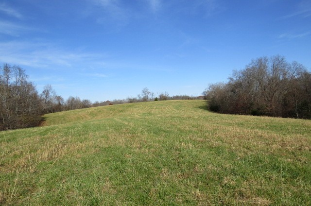 577 Petty Hollow Rd N N Property Photo - Lynnville, TN real estate listing