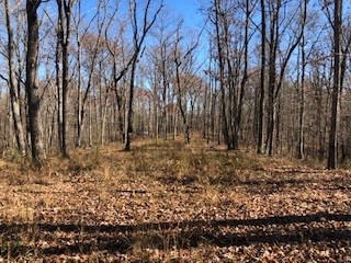 0 Green Forest Rd Property Photo - Dunlap, TN real estate listing