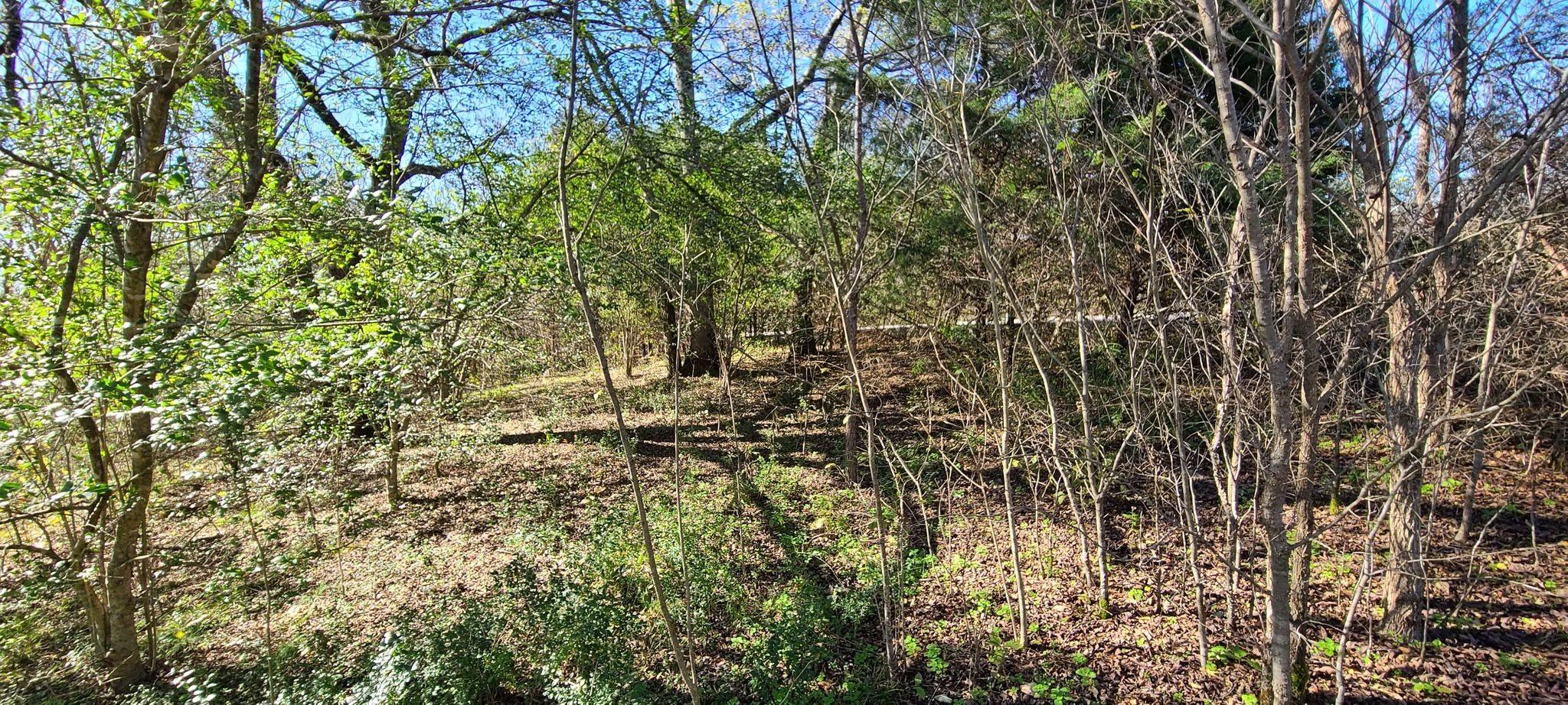57 Harbor Pointe Dr Property Photo - Lancaster, TN real estate listing