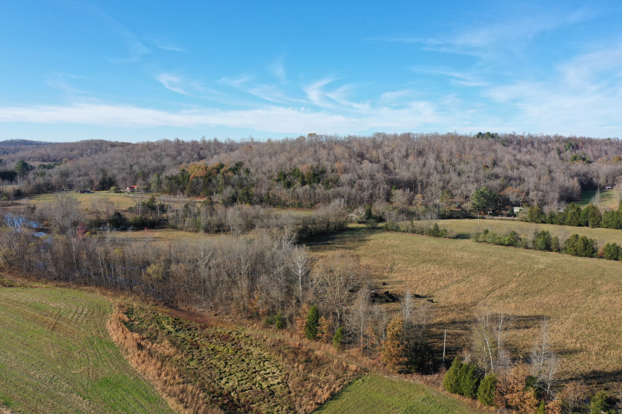 0 Lower Lick Creek Rd Property Photo - Linden, TN real estate listing