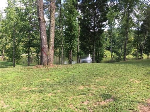 80 Dyer Rd. (Lot 80) Property Photo - Hurricane Mills, TN real estate listing