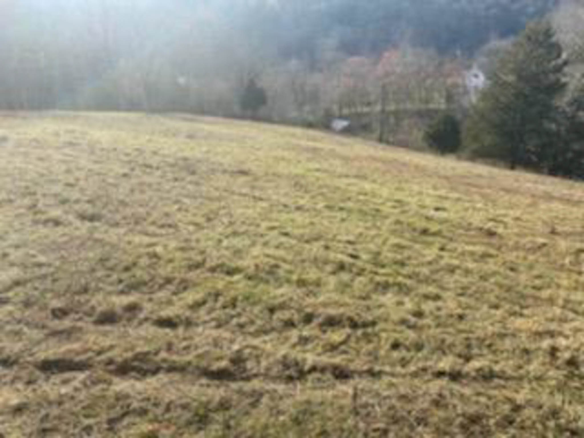 3722 Adamson Branch Rd Property Photo - Liberty, TN real estate listing