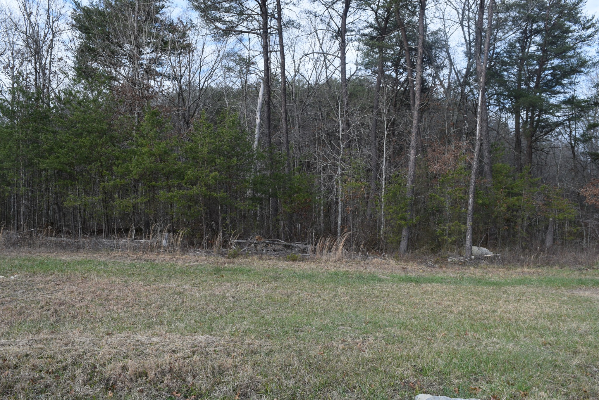 23213 SR 108 Property Photo - Coalmont, TN real estate listing