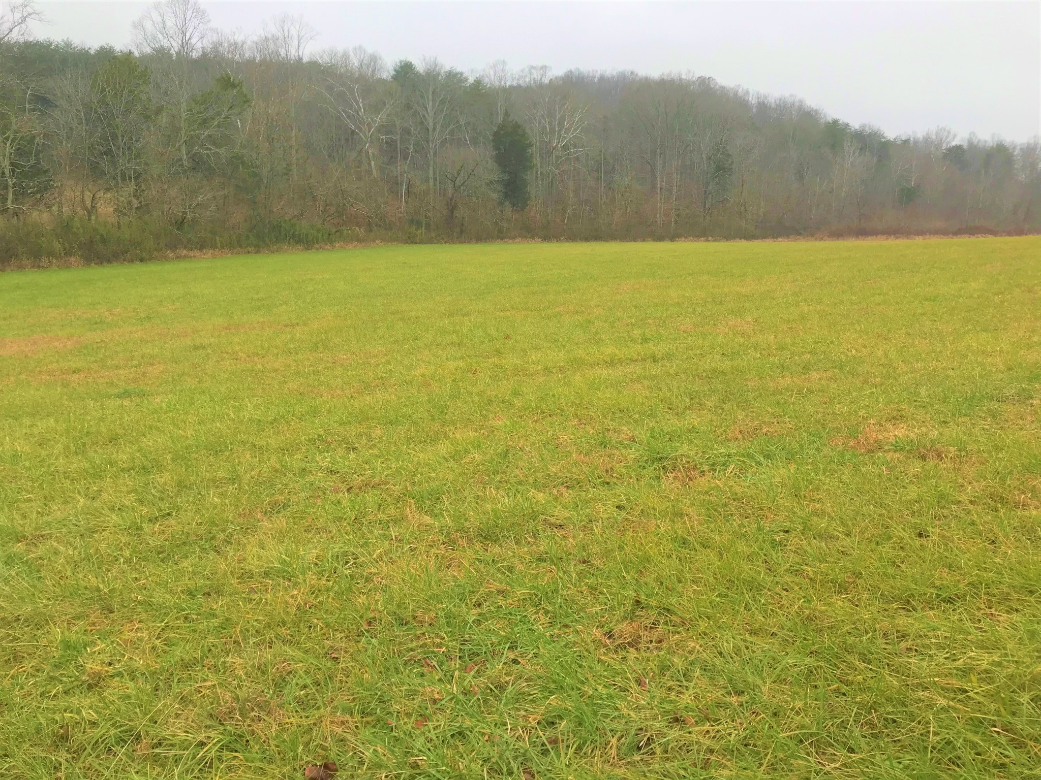 0 Standing Stone Hwy Property Photo - Hilham, TN real estate listing