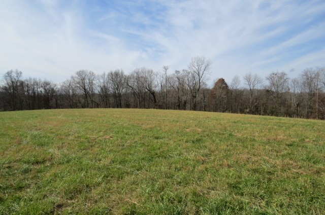 577 Petty Hollow Rd N Property Photo - Lynnville, TN real estate listing