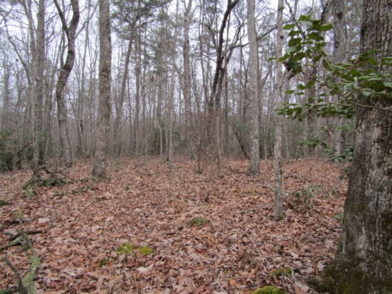 6 Overlook Rd Property Photo - Monterey, TN real estate listing