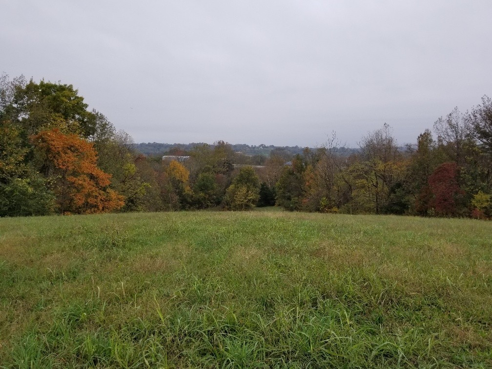 0 Lebanon Pike Property Photo - Hartsville, TN real estate listing