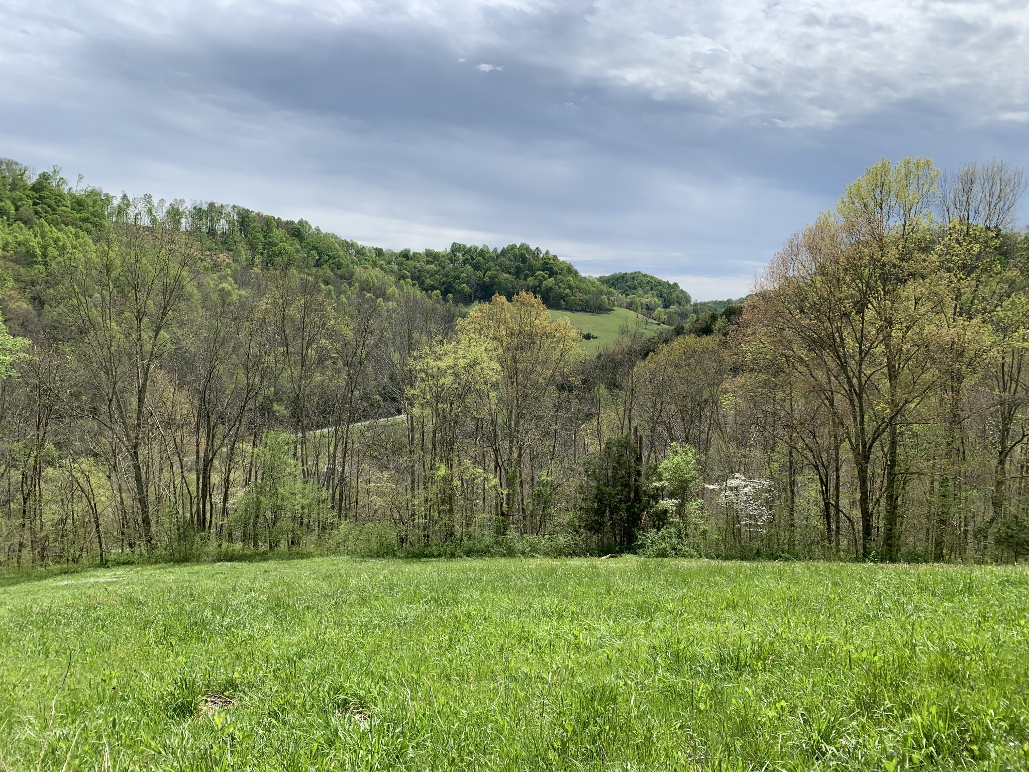 475 Halls Br Rd Property Photo - Pleasant Shade, TN real estate listing