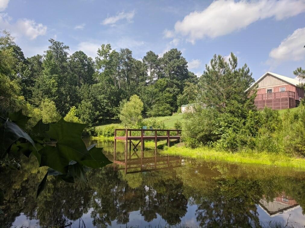 119 Cypress Rd Property Photo - Buchanan, TN real estate listing